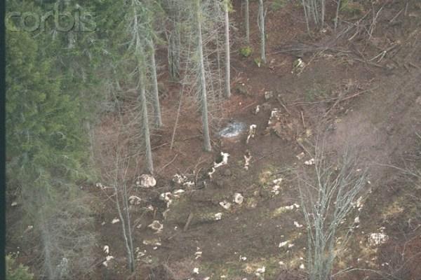 Φωτογραφία που τραβήχηκε στις 24 Δεκεμβρίου του 1995, στην Γκρενόμλ στον τόπο της μαζικής αυτοκτονίας.