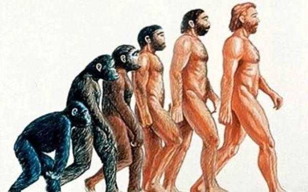 Γιατί βαδίζουμε με τα δυο μας πόδια; Τι ώθησε τον πρώτο άνθρωπο να σταθεί όρθιος και να περπατήσει