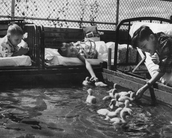 Άρρωστα παιδιά ταΐζουν παπάκια που παίζουν στο νερό.