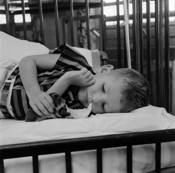 Το 1956, η θεραπεία με τα ζώα ήταν τόσο δημοφιλής, που έγινε και πολυσέλιδο αφιέρωμα στο περιοδικό «LIFE».