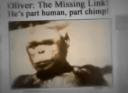 """Το """"υβρίδιο"""" ανθρώπου και χιμπατζή. 'Επινε καφέ και αλκοόλ, περπατούσε όρθιος και του άρεσαν οι γυναίκες. Έγινε πειραματόζωο και έζησε ως τα 52 του χρόνια"""