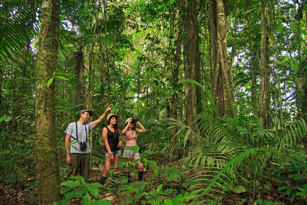 Τα άγνωστα χωριά του Αμαζονίου. Οι ερευνητές εκτιμούν ότι στο εσωτερικό της ζούγκλας υπήρχαν 1.000 έως 1.500 χωριά και τα περισσότερα δεν έχουν ακόμη ανακαλυφθεί