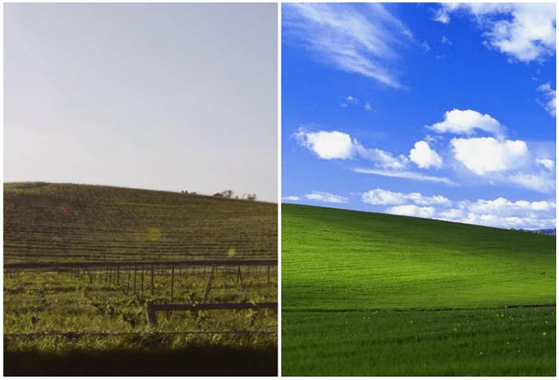 """Η ιστορία της διάσημης φωτογραφίας των Windows XP. Είναι η δεύτερη πιο ακριβοπληρωμένη φωτογραφία στην ιστορία. Πώς είναι ο περίφημος """"λόφος των windows XP"""" σήμερα"""