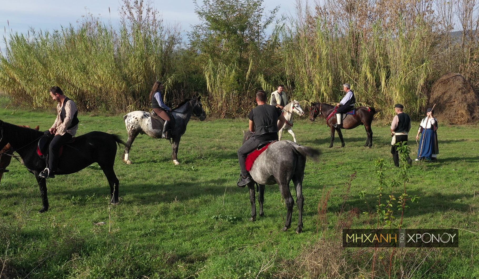 """Ελληνικά άλογα. Ποια φυλή """"γέννησε"""" τον Βουκεφάλα του Μ. Αλέξανδρου. Αήττητα, περήφανα και εργατικά, υμνήθηκαν όσο κανένα ζώο σε καιρό πολέμου"""