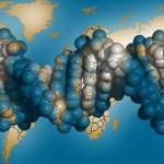 ADN -ul si organizarea lumii vii