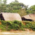locuintele waoranilor