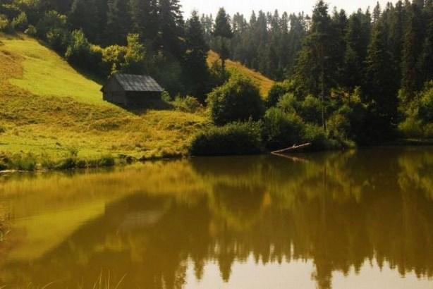 documentar-rosia-montana