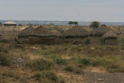 satul masailor