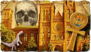 cine sterge istoria americii