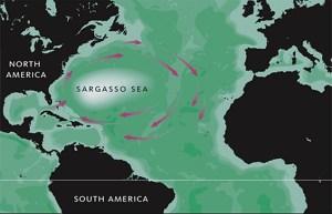 Triunghiul Bermudelor, istoria unui fenomen inexplicabil
