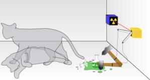 pisica lui Schroedinger