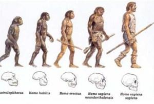 verigile lipsa ale evolutiei omului