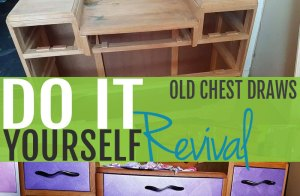 DIY Revival - Old Chest draws