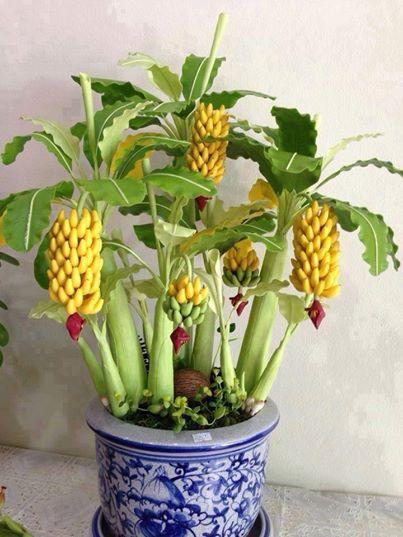 Crie seu Cantinho Verde com lindos Bonsais  Blog Mix Lar