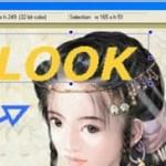 ScreenHunter Pro 6.0.805