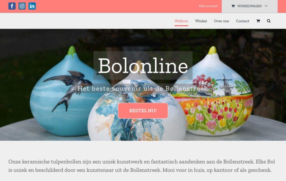 Website Bolinline