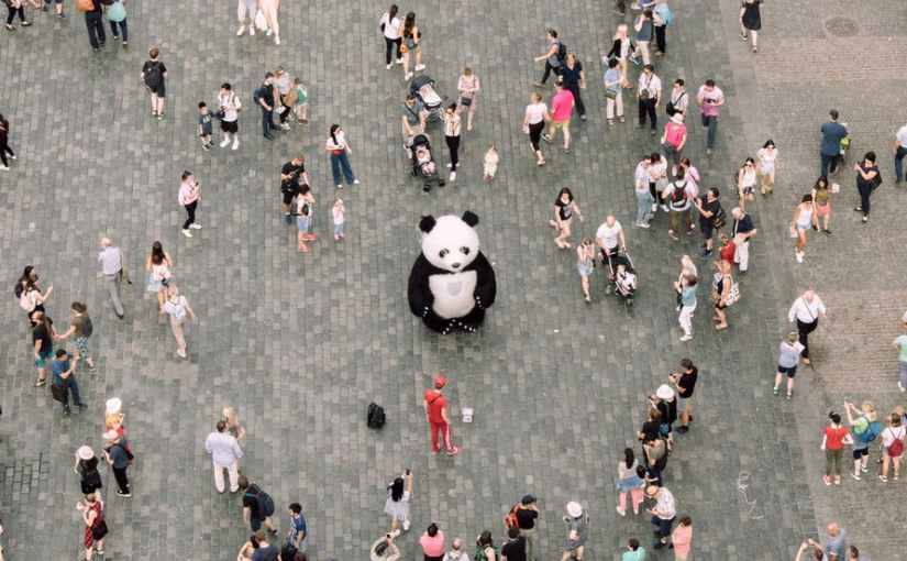 people gathered watching a panda mascot
