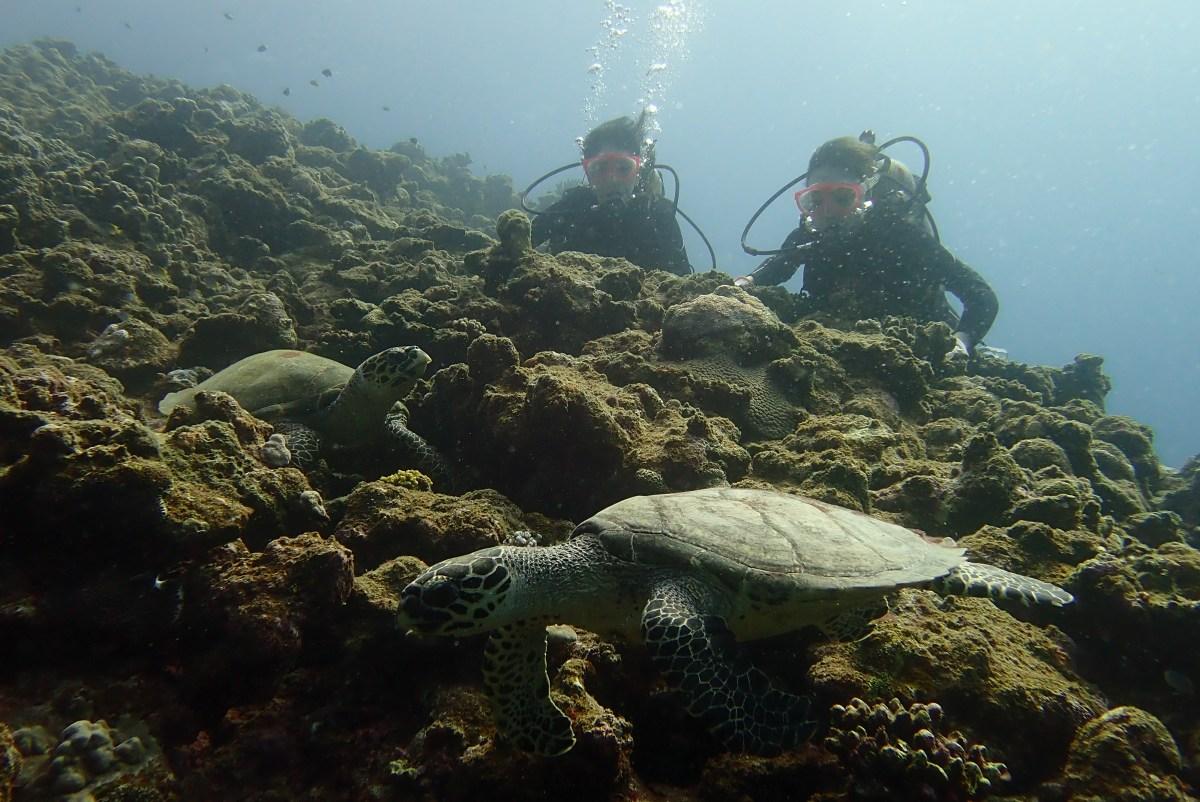 女子旅のお二人と一緒に下地島へボート体験ダイビング