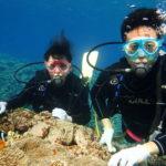 下地島 中の島チャネルで体験ダイビング
