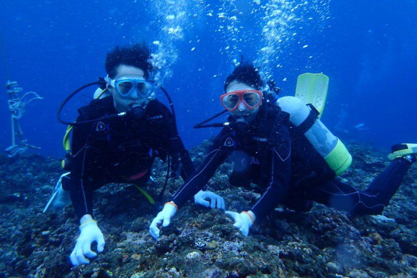 宮古島・カップルで体験ダイビング