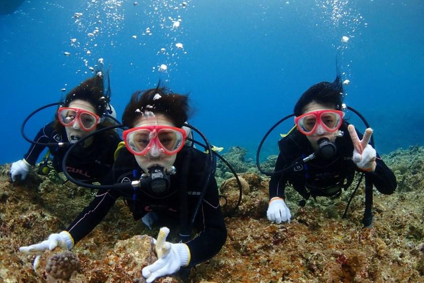 宮古島・中の島で体験ダイビング
