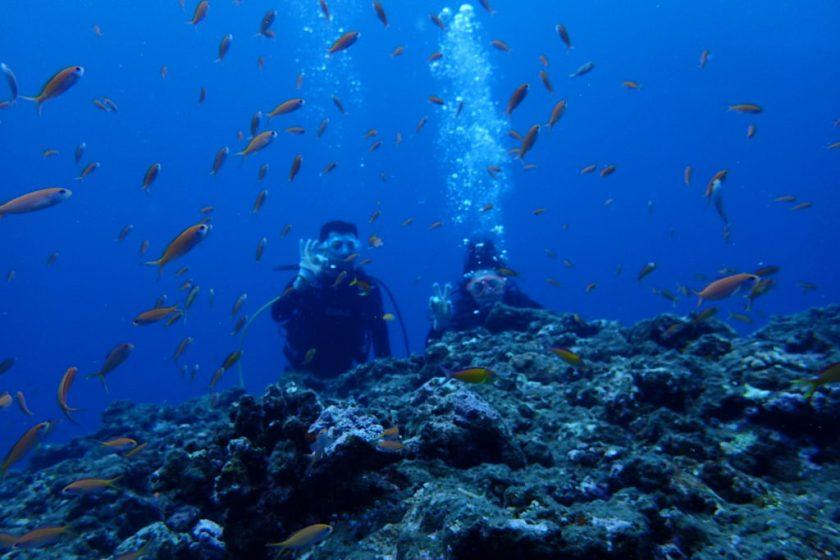 宮古島体験ダイビング・ハナダイの根