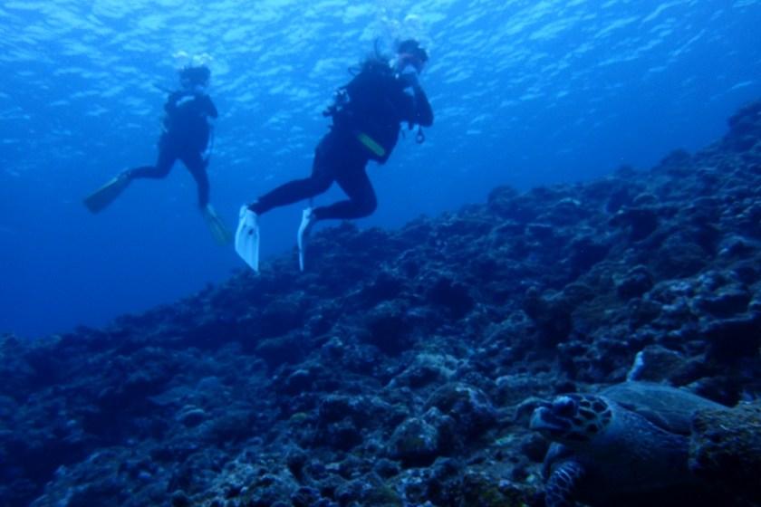 なるほど・ザ・ケーブで体験ダイビング