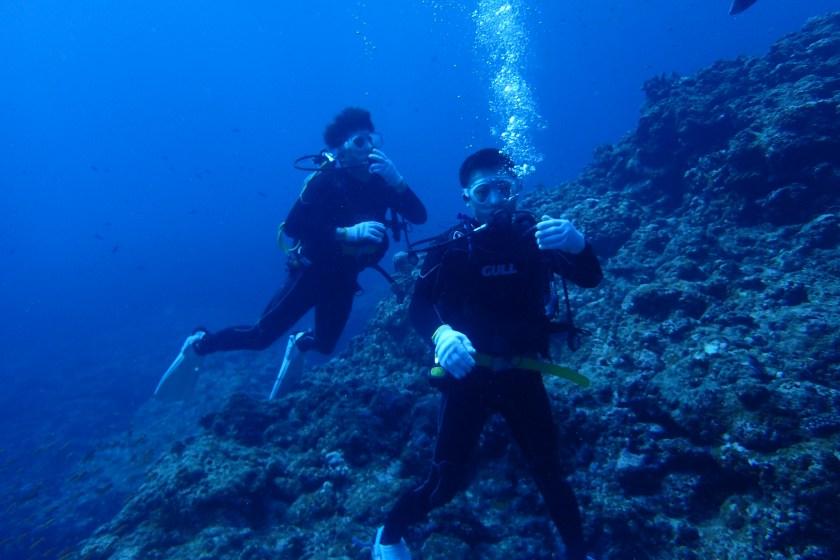 崖下・体験ダイビング
