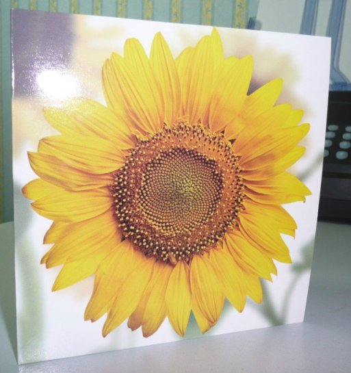 Cover of the card presented with the poem. A sunflower, of course!