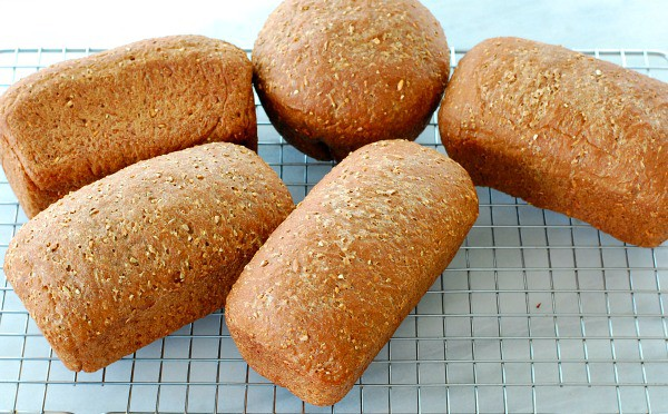 Five loaves of wholegrain cocktail rye bread are baked and cooling on a rack. | mjbakesalot.com