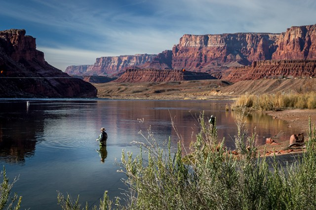 Colorado River Fisherman