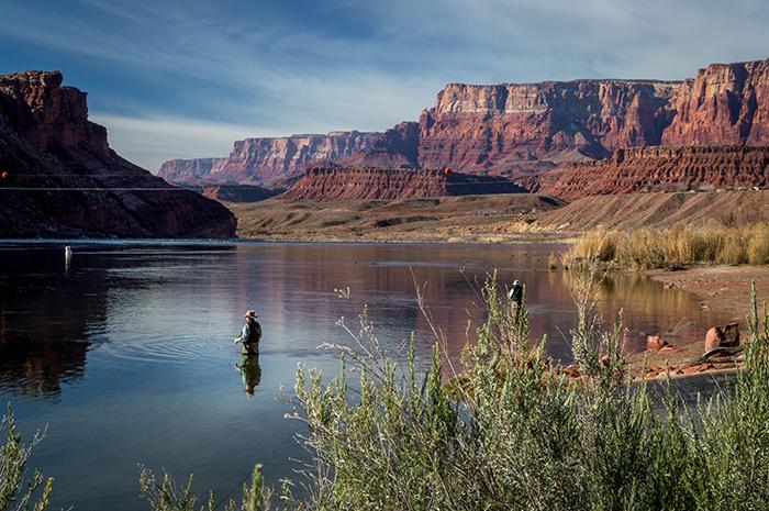 Colorado River Fisherman