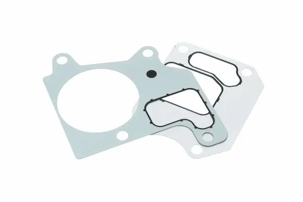 Engine Thermostat Gaskets