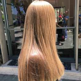 Best Hair Colorist Hair Colors MJ Hair Designs (818) 783-0084 Los Angeles Sherman Oaks Studio City Tarzana Encino