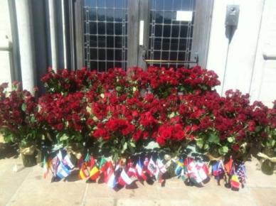 1000_roses