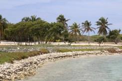 Cuba - MK Dance Studio Pontault-Combault 77 (58)