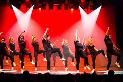 Gala-2015-Fée-Gaffe-Adulte---MK-Dance-Studio-Pontault-Combault-77-(13)