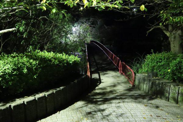 【愛媛】市民の森・フラワーパーク 今治①