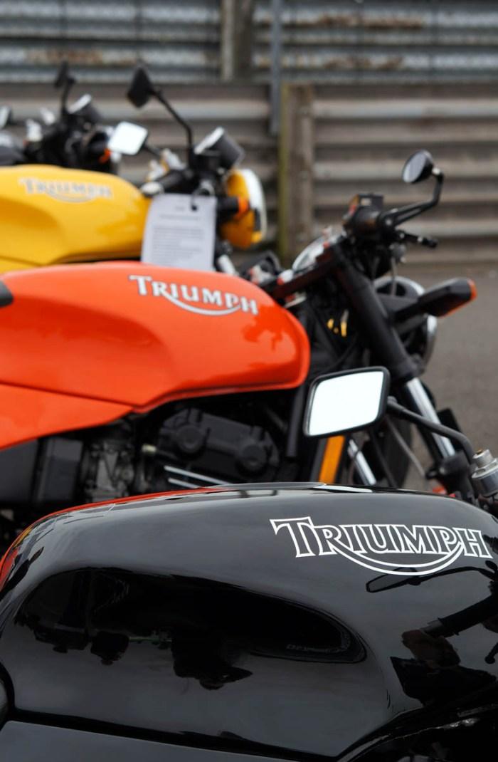 Gallery - Triumph Live 2012 - 8