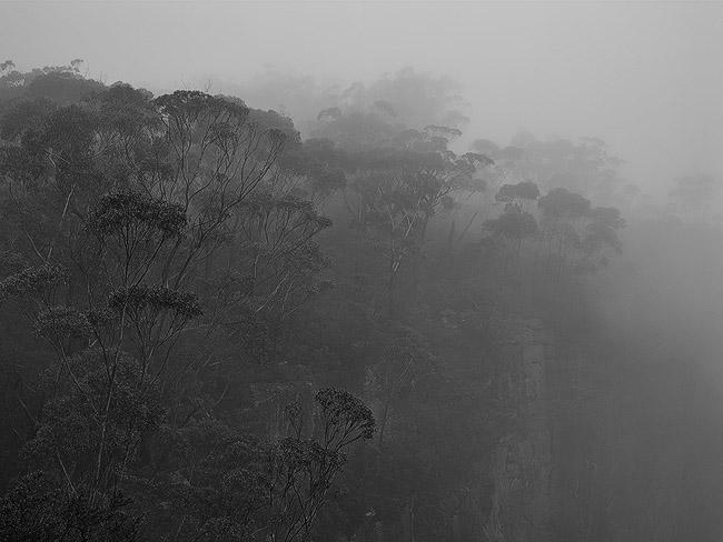 Southern Highlands Mist
