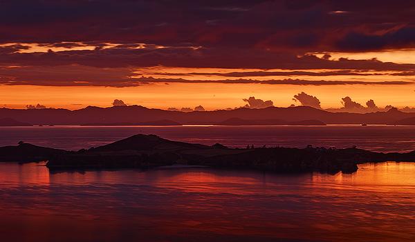 Waiheke_Island_Coromandels