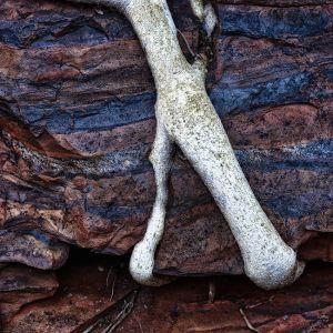 Mark Kelly - 'xRock' - (98cm x 98cm)