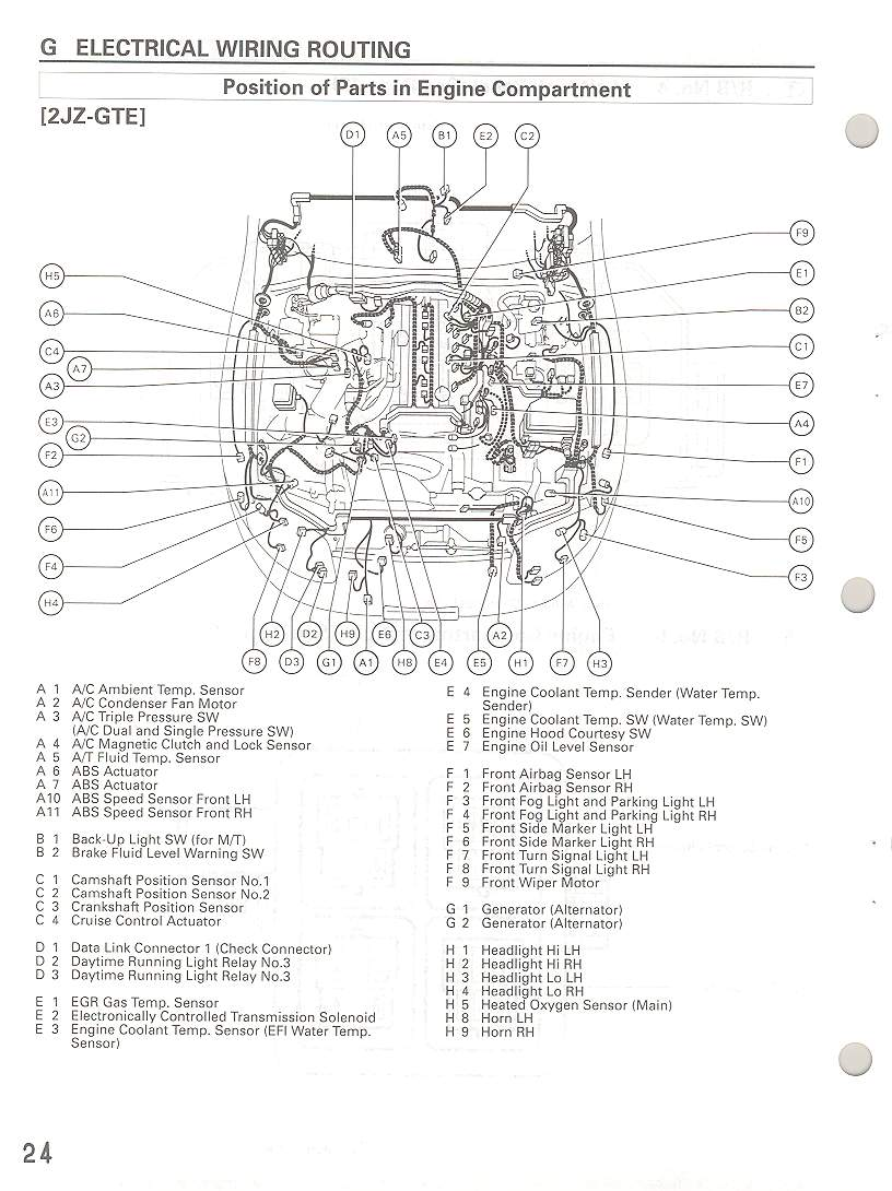 Detailed photo-diagram of wiring harness connections