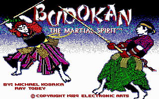 budokan-the-martial-spirit_1