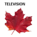 Trump, Baseball, Sunny Weather and Methodology Changes Drive Fall 2016 Shortfalls in Television Viewing for Canadian Suppliers