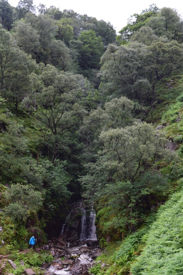 Scale Force waterfall perched in deep gorge