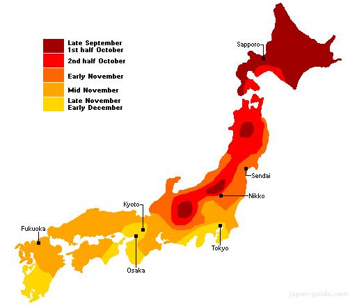 Foliage fall season in Japan