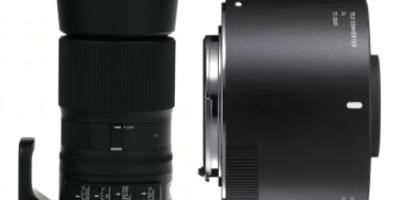 Sigma teleconverter 2x TC-2001 and Sigma 150-600mm Contemporary lens
