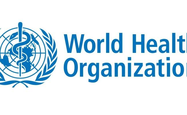 World Health Organization Who Internship Program