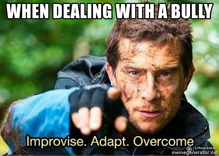 Improvise Adapt Overcome Bully